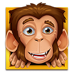Scatter of Loco the Monkey Slot