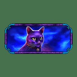 Icon 2 Madame Destiny Megaways