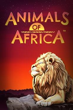 Играть Animals of Africa онлайн