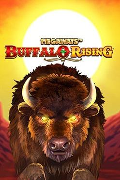 Buffalo Rising Free Play in Demo Mode