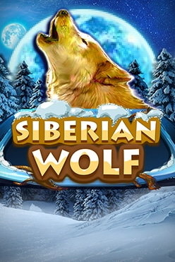 Siberian Wolf Free Play in Demo Mode