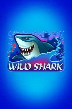Wild Shark Free Play in Demo Mode