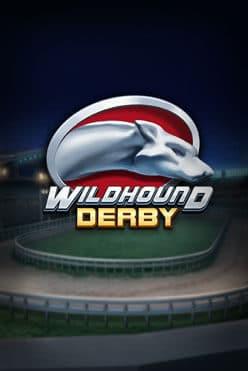 Wildhound Derby Free Play in Demo Mode