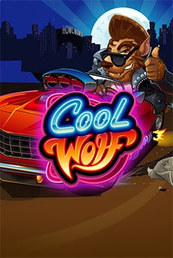 Cool Wolf Free Play in Demo Mode