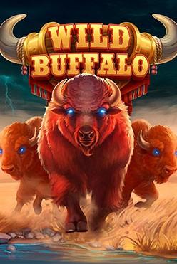 Wild Buffalo Free Play in Demo Mode
