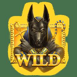 Wild Symbol of Curse of Anubis Slot