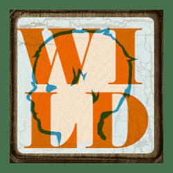 Wild Symbol of Stack Em Slot