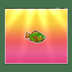 Icon 9 Bigger Bass Bonanza