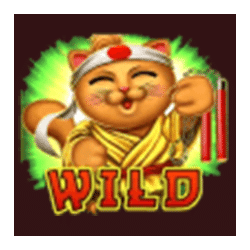 Wild Symbol of Midnight in Tokyo Slot