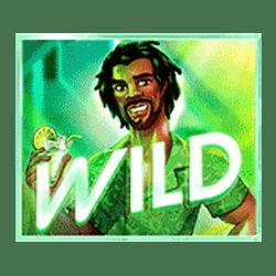 Wild Symbol of Summer Jam Slot