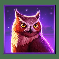 Icon 6 Wolf Night