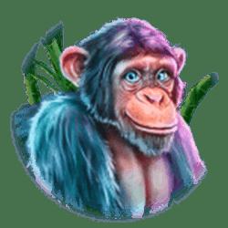 Icon 5 King Koko's Quest