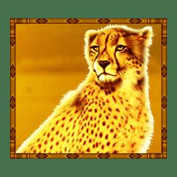 Icon 2 Rumble Rhino Megaways