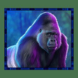 Icon 1 Rumble Rhino Megaways