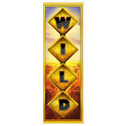 Wild Symbol of Outback Gold: Hold & Win Slot