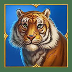 Icon 4 Tiger Tiger Wild Life