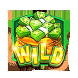 Wild Symbol of Cash Bonanza Slot