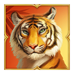 Icon 1 Tiger Tiger Wild Life