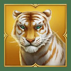 Icon 2 Tiger Tiger Wild Life