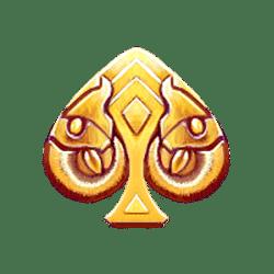 Icon 6 Age Of Akkadia