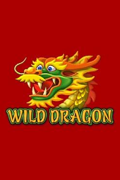 Wild Dragon Free Play in Demo Mode